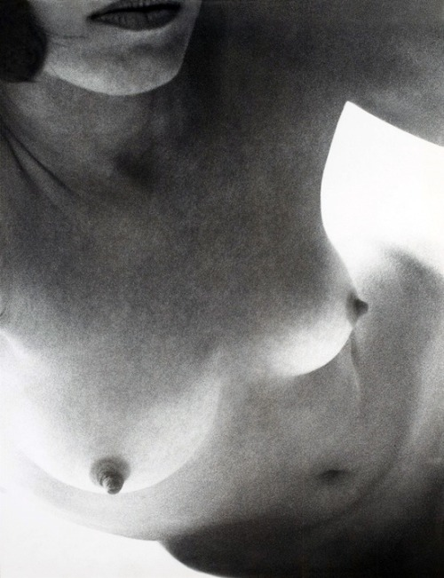 nudesartistic:  (via Wingate Paine 1964-65 | peChOs AkT.!.)