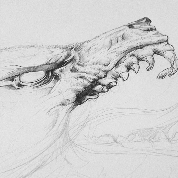 Wolf illustration, quite a ways to go yet.