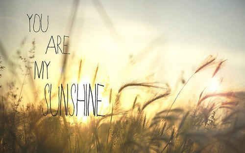 You are my SUNSHINE, my only #CLG Daily Dose of Daylight #SunLove