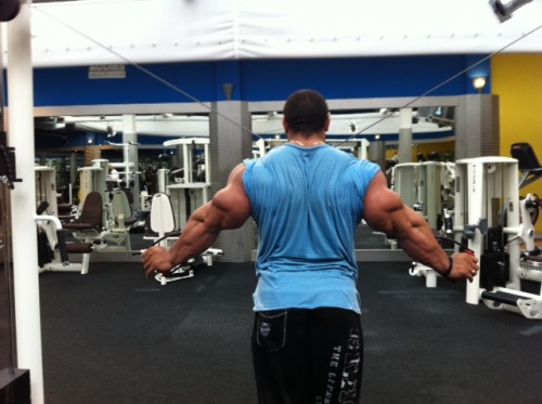 drwannabe:  Roelly Winklaar's tris  [view all posts of Roelly]