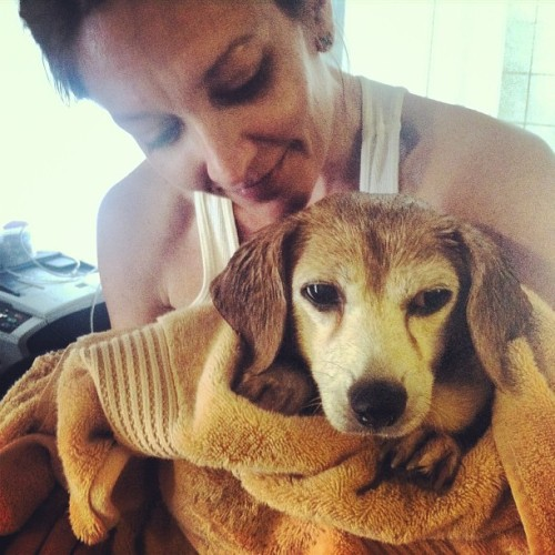 Bathtimebeagle ❤🐶❤🐶❤ #bestfriend