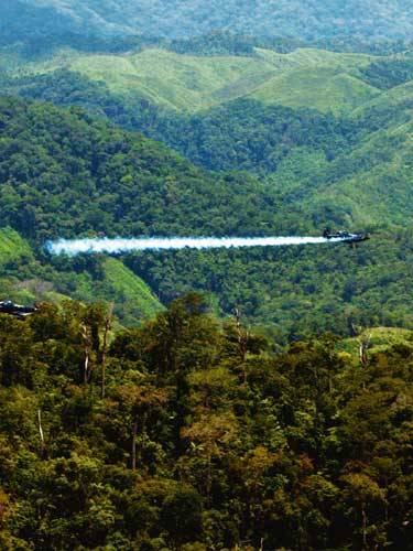 """The war on Colombia's drug lords is losing ground to an herbicide-resistant supershrub. Is it a freak of nature – or a genetically modified secret weapon?""The Mystery of the Coca Plant That Wouldn't Die - Joshua Davis - Wired"