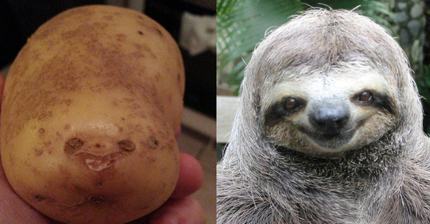 japcoregalore:  uncanny   holy shit sloth blubbery thing