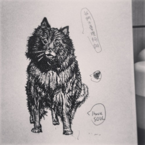 I drew a really really black dog