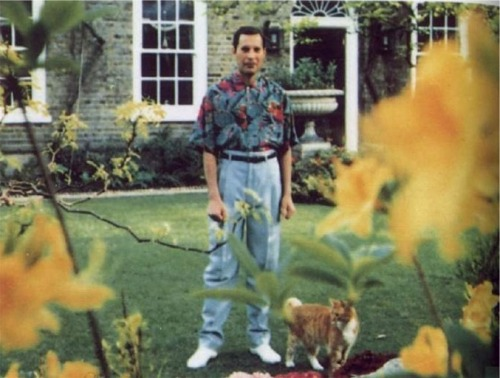 fuckyeah1990s:  Last known photo of Freddie Mercury. 1991.