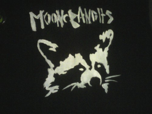 wolfenways:  Finished stenciling my sweater! Moon Bandits and a mischievous little Raccoon to go with it.