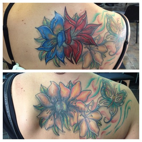 Comparison in progress, blue flower is healed