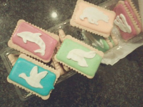 Bakers Kid Iced Zoo Biscuits. They're so cute. I just had to buy it. #cute #biscuits #love #sweet #happy #random #foodporn(from @BUNNYMONSTER on Streamzoo)