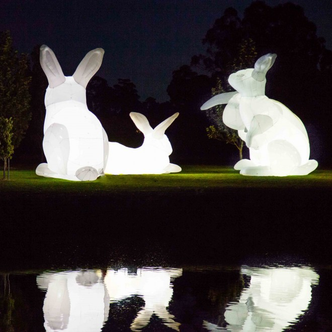 sydney festival the rabbits who caused - photo#16