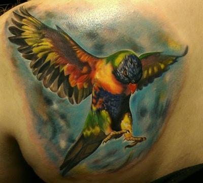 This was my first tattoo (done in 2011) of a Rainbow Lorikeet. Done by Rember at Cat Tattoo in Addison, TX.