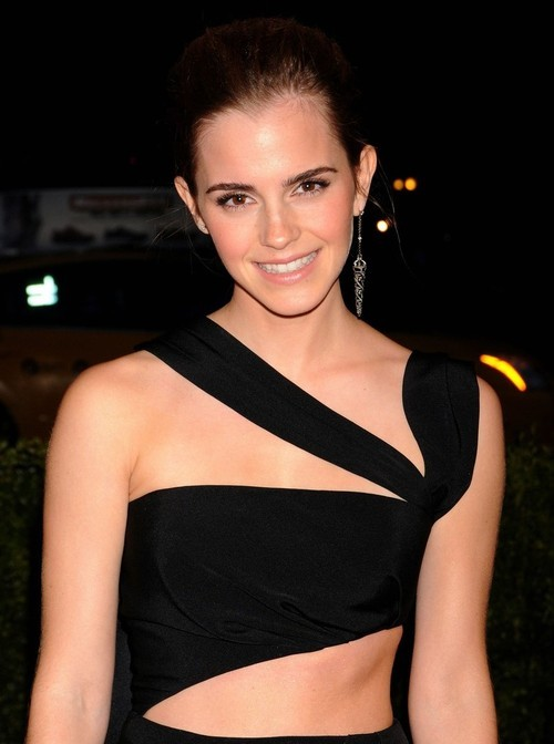 Emma Watson at the MET Gala 2013