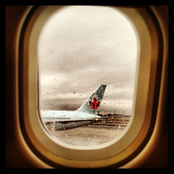 Tell me a tail. #aircanada #airport #yyz #iphonephotography #iphone #rain #raindrops #goinghome #airplane #toronto #torontoaitport (at Gate D39)