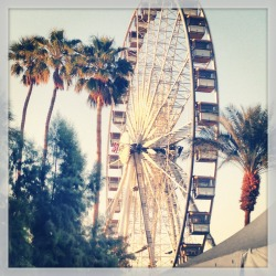 Withdrawals anyone? #Coachella