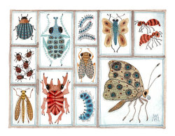 shellfoo:  (via Beetles Weevils Flies No 16 original watercolor by GollyBard)