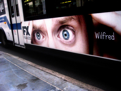 arbrecitron420:  Beware Elijah Wood Eyes - Wilfred Bus AD 8552 by Brechtbug on Flickr.