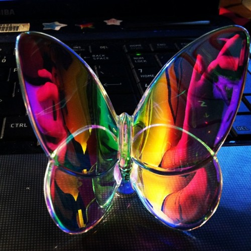 #birthday #present from #boyfriend #pretty #girly #colors #rainbow #butterfly