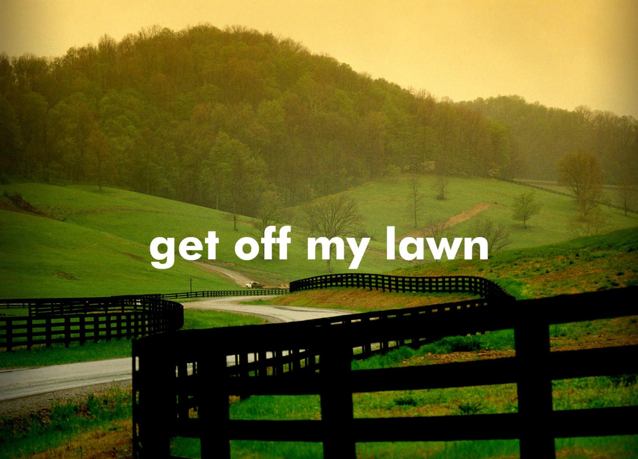 I was googling lawns/lawn care/grass/yaddy yaddy yaddy for this terrible trifold I have to design and this popped up in the results and you know, it really spoke to me.