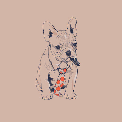 huebucket:  FRENCH BULLDOG BOSS Free shipping!