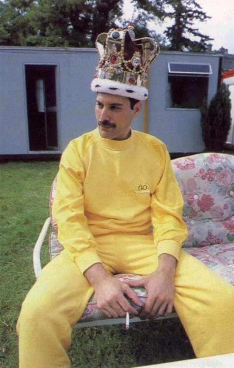 allkindsofcool:  Freddy Mercury