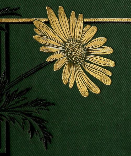 nemfrog:  Cassell's popular gardening. v.3. 1884. Cover detail. Internet Archive