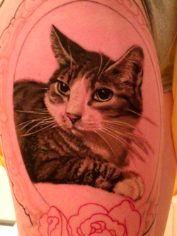 fuckyeahtattoos:  This is my tattoo honoring my pet cat.  The photo was taken a few days after my first session; I still have one session to go and can't wait until it's finished.