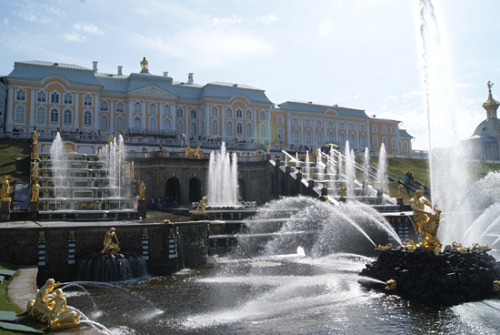 The fountains at the Peterhof, May 9th 2013 Yeah, the Russians certainly didn't invent subtlety. It's stunning, it is, especailly all lit up by the sun as it was on this day.