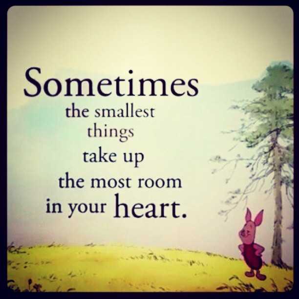 #Winniethepooh #quotes #regram #cute ❤
