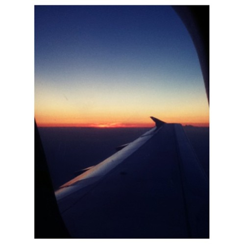 From last night's flight 😍