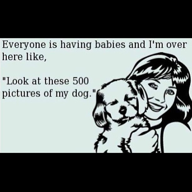 This is so me!! Lmfao #nokids #noworries #tuesday #today #pet #kids #puppy #everyone