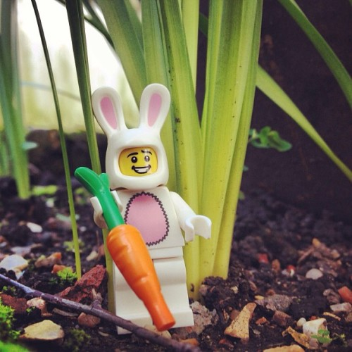 Doing the gardening #lego #rabbit #spring