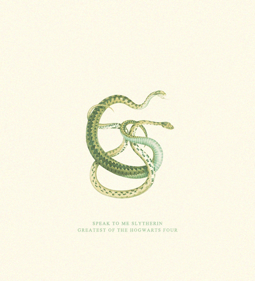 inspired by the painting two snakes (albertus seba)