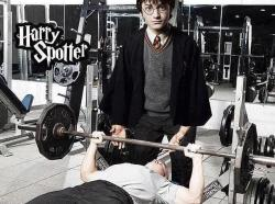 aesthtics:  You're a spotter, 'Arry!