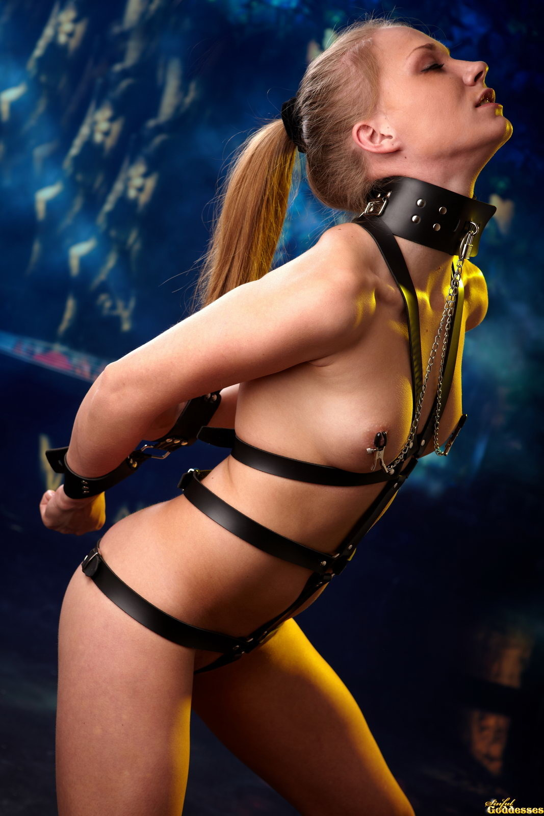 Leather BDSM harness