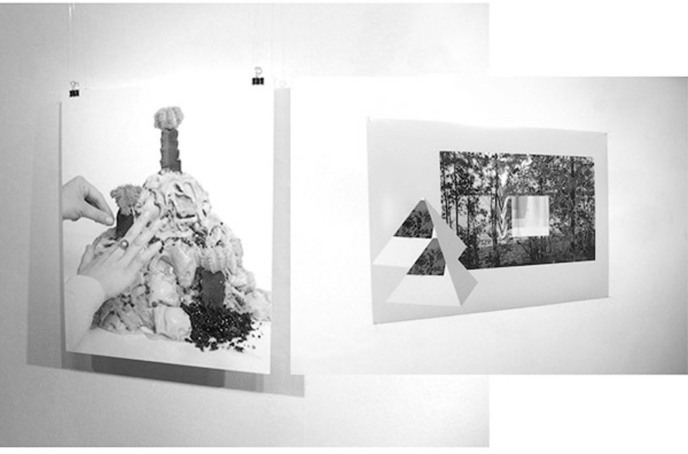 Sunset, forest and two pyramids (black and white) has been recently shown in the Seedless exhibition (curated by Wandering Bears & Blink) at Scott Gallery, Plymouth, UK