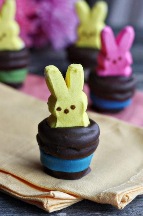 gastrogirl:  peeps magician hat marshmallow bites.  Ingredients 12 PEEPS bunnies (whatever colors you like!) One bag of black or dark brown candy melts 12 jumbo marshmallows 12 chocolate sandwich cookies (try different flavors to make it more interesting! I used chocolate cream cookies) Airhead taffy candy, optional