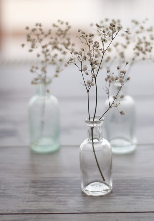 thedesignofliving:  Lovely idea for wedding/ general table decorations