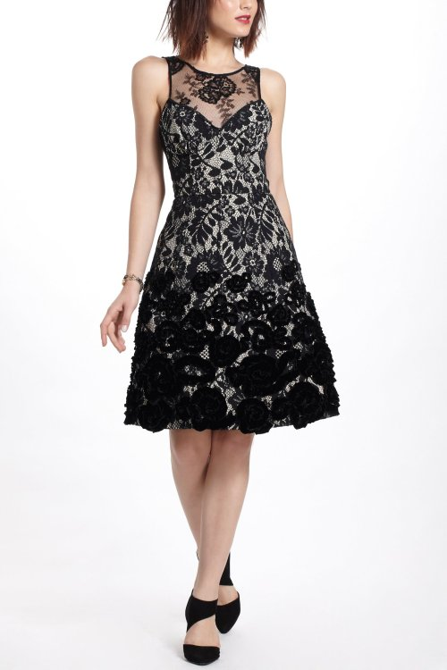 wantering:  Tracy Reese Flocked Botany Dress