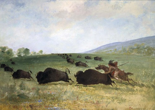 artandopinion:  An Osage Indian Lancing a Buffalo 1846 - 1848 George Catlin