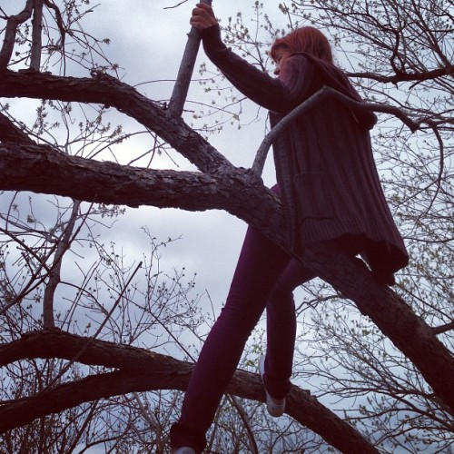 She likes to climb trees @mjwatson_