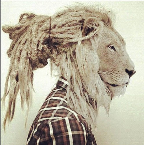 sitarabird:  #selfportrait #love #dreads #lion 