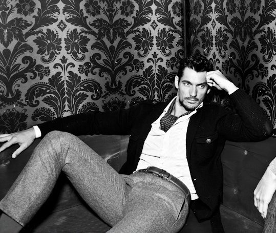 missharper100:  today's daily Gandy