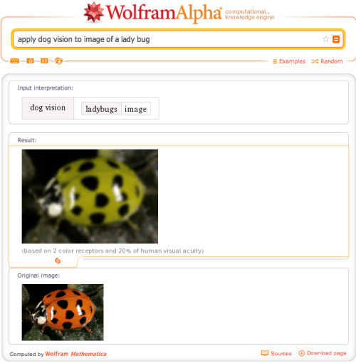 Using Wolfram|Alpha, you can see the world as if you were a dog, colorblind, or living in a world of comics! Learn more on our blog!