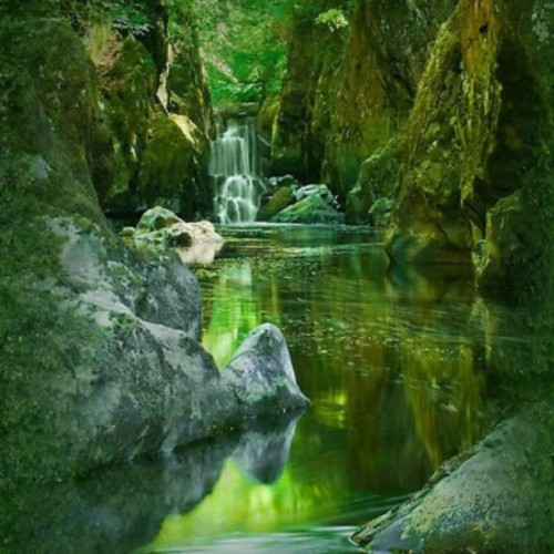 Really looks like where faeries & nymphs live…. * The Fairy Glen, North Wales
