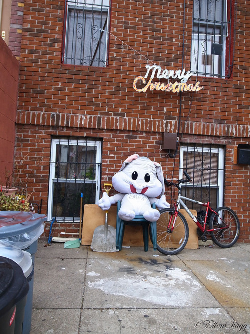 Merry Christmas from the big stuffed bunny.