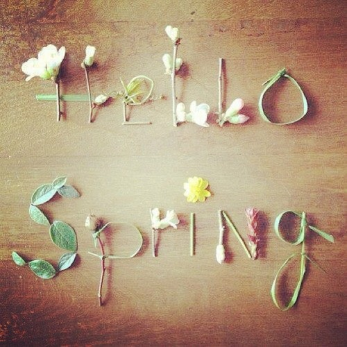 iheartsocialista:  Hello Spring 🌷🌷 Happy first day of spring 😽 #shopsocialista #iheartsocialista #spring #goodmorning #shop #floral (at www.shopsocialista.com)