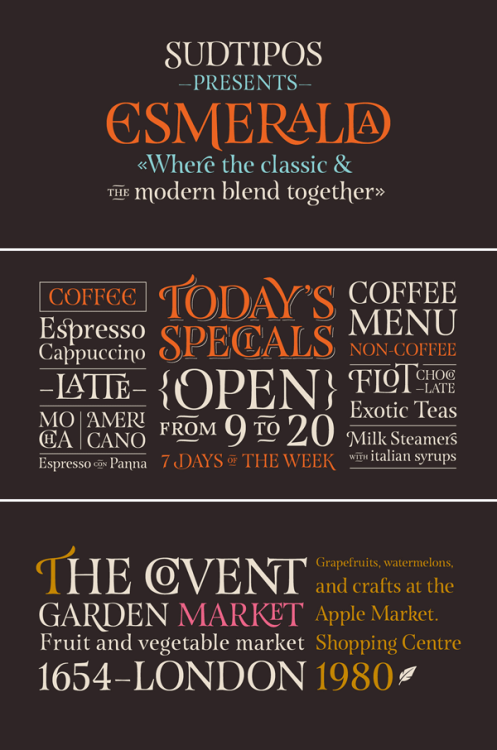 Esmeralda Pro - Classic Serif Typeface Esmeralda Pro is a serif font designed by Guille Vizzari (Font Publisher: Sudtipos). The classic typeface is highly inspired by 'capitalis monumentalis', carved in stone while the elegant style of the capital letters is influenced of handwritten calligraphy. Esmeralda includes several ligatures, which combine classic shapes with a more contemporary impression. Esmeralda comes with a wide range of OpenType features including alternative characters, initial caps, ligatures, miscellaneous and connectors. This classic curved typeface works great as stylish display font. Buy Esmeralda Pro on MyFonts.com Check out more recommended fonts here. Esmeralda Pro on WE AND THE COLORWATC//Facebook//Twitter//Google+//Pinterest