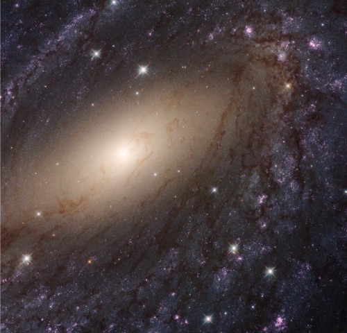 spiral galaxy galaxy space science astrophotography astronomy nasa nasa image of the day hubble hubble space telescope milky way