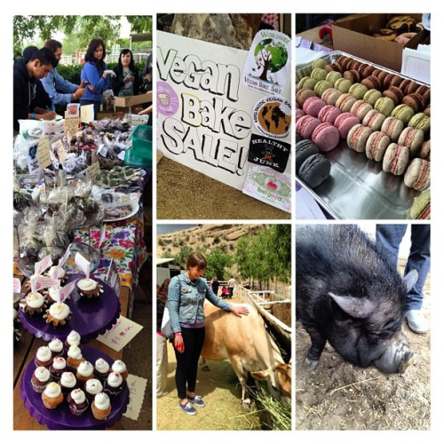 Vegan Bake Sale at The Gentle Barn! Lots of sweets and animals!  (at The Gentle Barn)