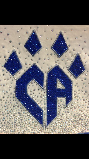 worlds-2013:  Cheetahs sneak peak for their uni