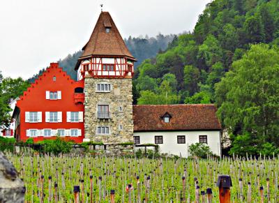 #vaduz, #liechtenstein, #architecture, #landscape, #cityscape, #mansion, #house, #red, #alps